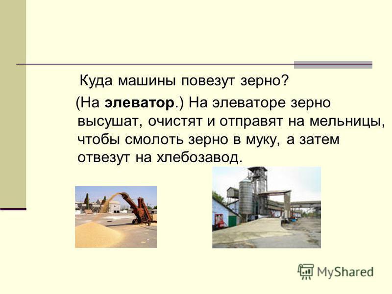 Куда машины повезут зерно? (На элеватор.) На элеваторе зерно высушат, очистят и отправят на мельницы, чтобы смолоть зерно в муку, а затем отвезут на хлебозавод.
