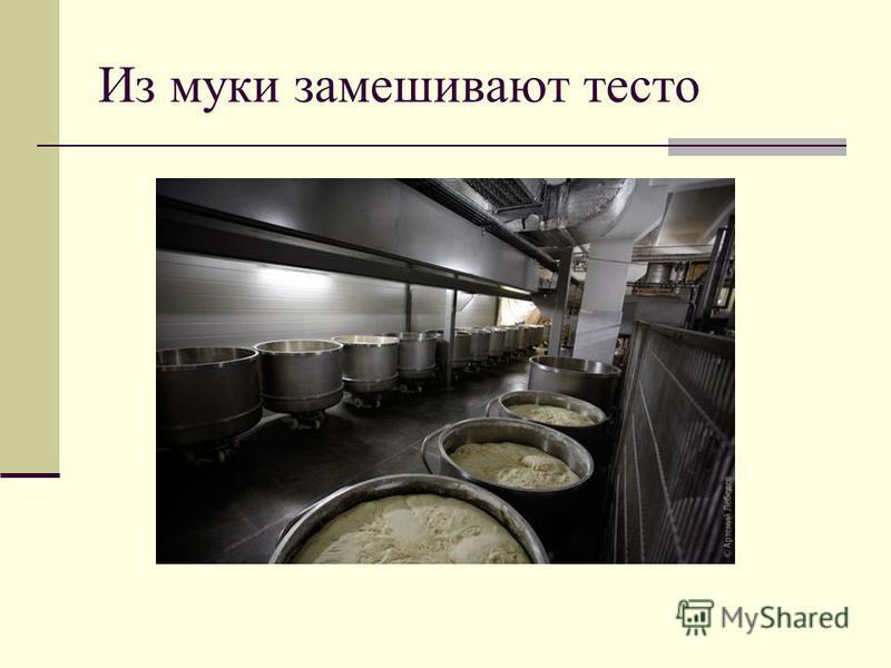 Из муки замешивают тесто