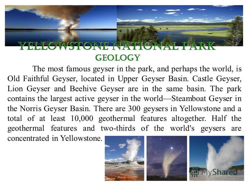 Yellowstone National Park geology The most famous geyser in the park, and perhaps the world, is Old Faithful Geyser, located in Upper Geyser Basin. Castle Geyser, Lion Geyser and Beehive Geyser are in the same basin. The park contains the largest act