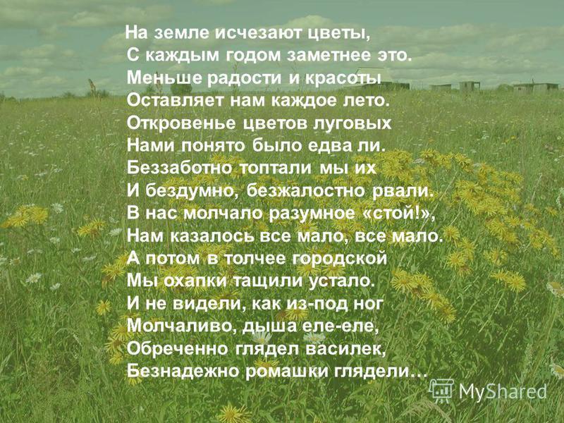 На земле исчезают цветы, С каждым годом заметнее это. Меньше радости и красоты Оставляет нам каждое лето. Откровенье цветов луговых Нами понято было едва ли. Беззаботно топтали мы их И бездумно, безжалостно рвали. В нас молчало разумное «стой!», Нам