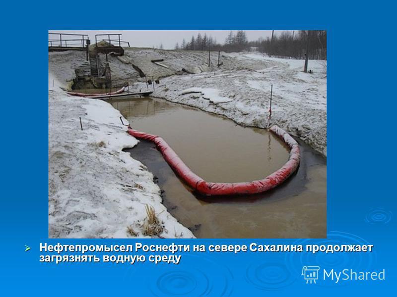 Нефтепромысел Роснефти на севере Сахалина продолжает загрязнять водную среду Нефтепромысел Роснефти на севере Сахалина продолжает загрязнять водную среду