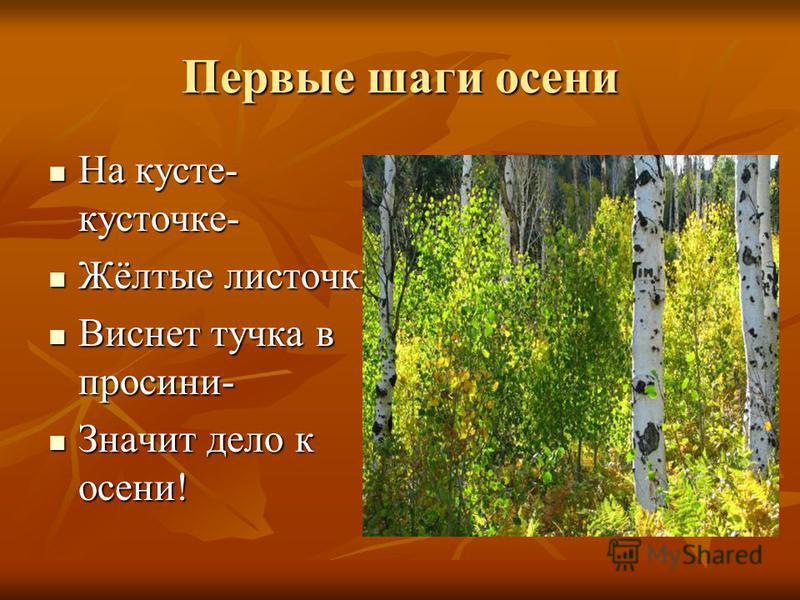 Первые шаги осени На кусте- кусточке- На кусте- кусточке- Жёлтые листочки Жёлтые листочки Виснет тучка в просини- Виснет тучка в просини- Значит дело к осени! Значит дело к осени!