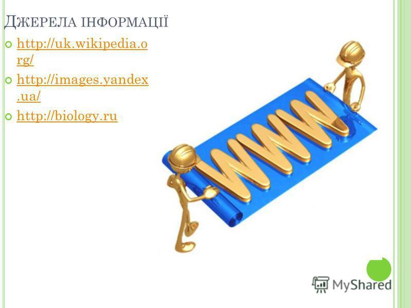 Д ЖЕРЕЛА ІНФОРМАЦІЇ http://uk.wikipedia.o rg/ http://uk.wikipedia.o rg/ http://images.yandex.ua/ http://images.yandex.ua/ http://biology.ru http://biology.ru