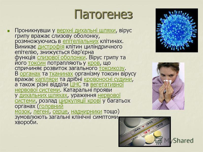 Патогенез Проникнувши у верхні дихальні шляхи, вірус грипу вражає слизову оболонку, розмножуючись в епітеліальних клітинах. Виникає дистрофія клітин циліндричного епітелію, знижується бар'єрна функція слизової оболонки. Вірус грипу та його токсин пот