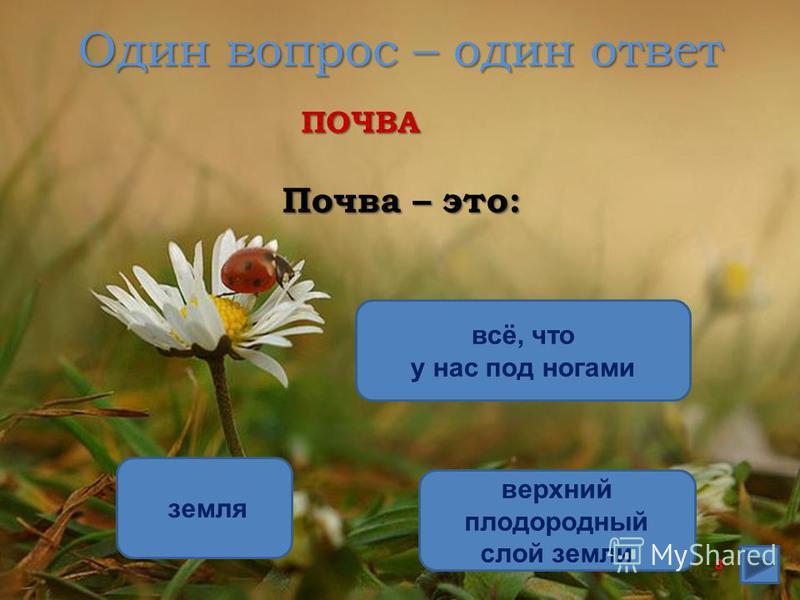 Один вопрос – один ответ Почва – это: верхний плодородный слой земли земля всё, что у нас под ногамиПОЧВА 8