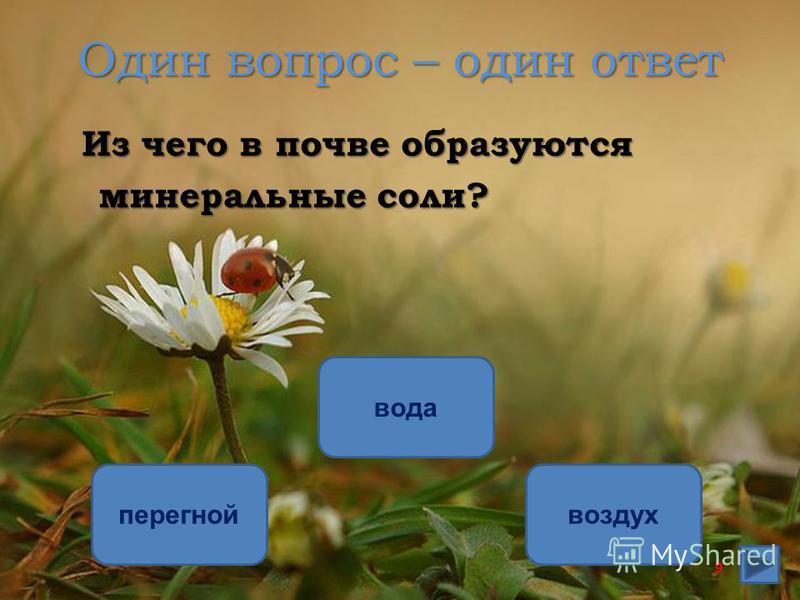 Один вопрос – один ответ Из чего в почве образуются минеральные соли? минеральные соли? перегной вода воздух 9