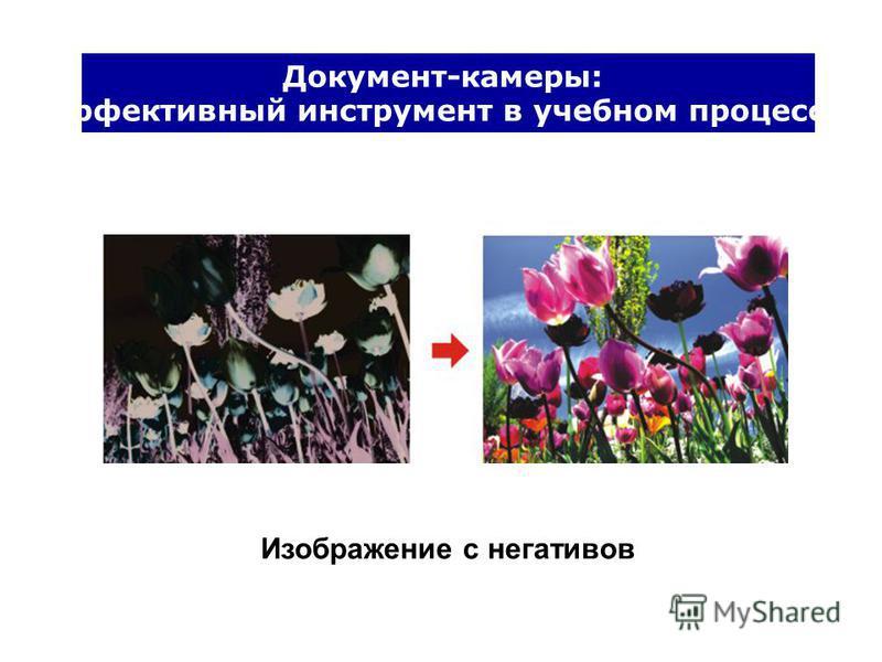 Документ-камеры: Эффективный инструмент в учебном процессе Изображение с негативов