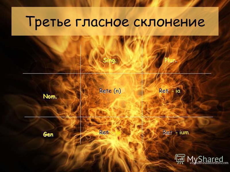 Третье гласное склонение Sing. Plur. Nom. Gen Ret (n) Rete (n) Ret Ret Ret - is - ia - ium