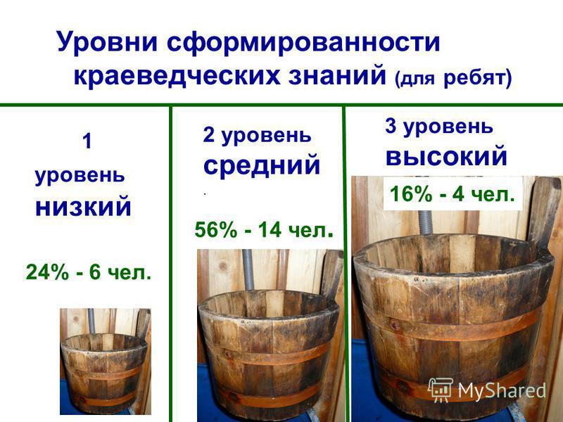 1 уровень низкий 2 уровень средний. 3 уровень высокий Уровни сформированности краеведческих знаний (для ребят) 24% - 6 чел. 56% - 14 чел. 16% - 4 чел.