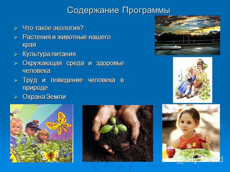 Содержание Программы Что такое экология? Что такое экология? Растения и животные нашего края Растения и животные нашего края Культура питания Культура питания Окружающая среда и здоровье человека Окружающая среда и здоровье человека Труд и поведение