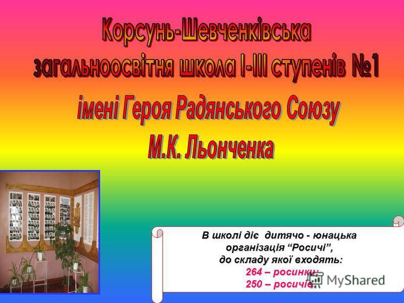 В школі діє дитячо - юнацька організація Росичі, до складу якої входять: 264 – росинки; 264 – росинки; 250 – росичів.