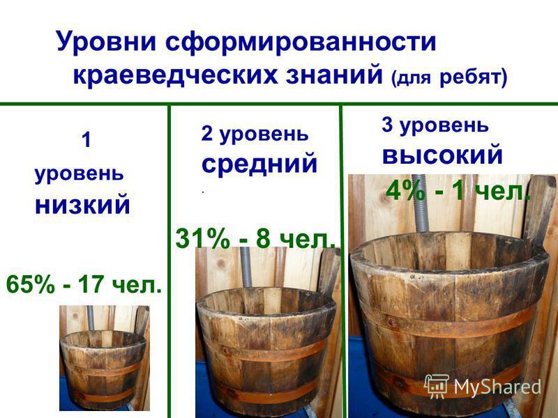 1 уровень низкий 2 уровень средний. 3 уровень высокий Уровни сформированности краеведческих знаний (для ребят) 65% - 17 чел. 31% - 8 чел. 4% - 1 чел.