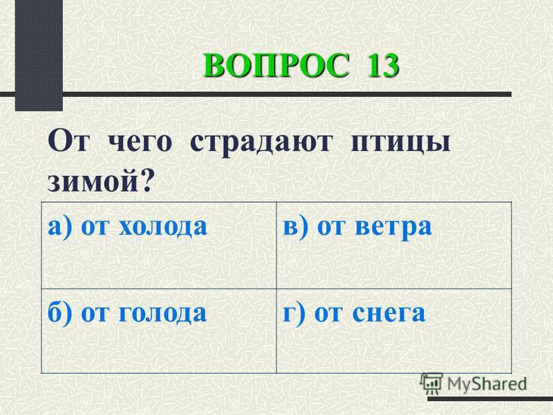 ВОПРОС 13 От чего страдают птицы зимой? а) от холода в) от ветра б) от голода) от снега