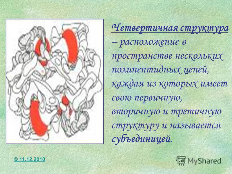 Четвертичная структура – расположение в пространстве нескольких полипептидных цепей, каждая из которых имеет свою первичную, вторичную и третичную структуру и называется субъединицей. © 11.12.2010