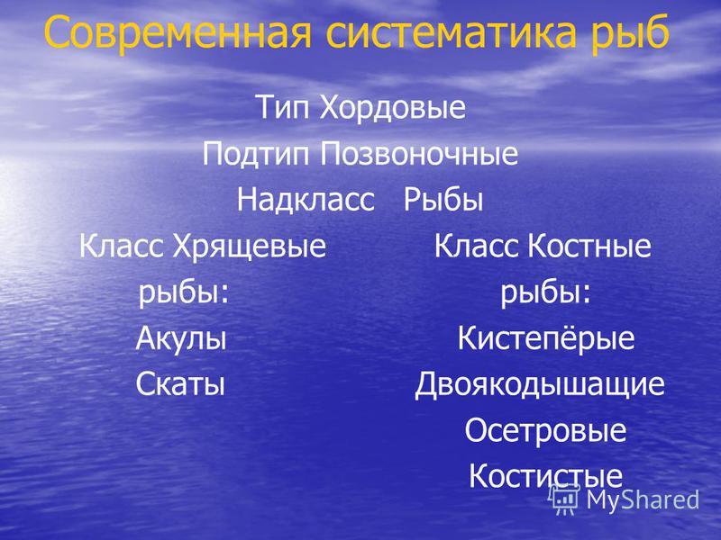 Современная систематика рыб Тип Хордовые Подтип Позвоночные Надкласс Рыбы Класс Хрящевые Класс Костные рыбы: рыбы: Акулы Кистепёрые Скаты Двоякодышащие Осетровые Костистые