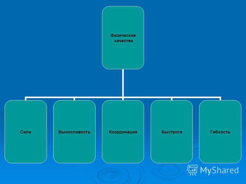 Физические качества Сила ВыносливостьКоординация БыстротаГибкость