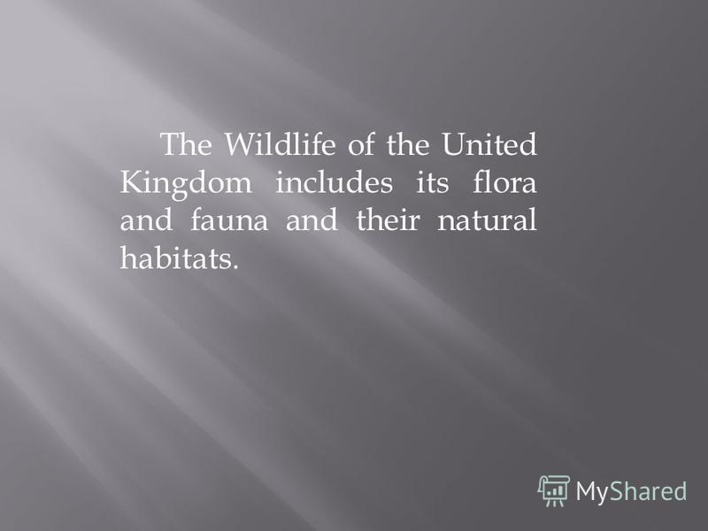 The Wildlife of the United Kingdom includes its flora and fauna and their natural habitats.