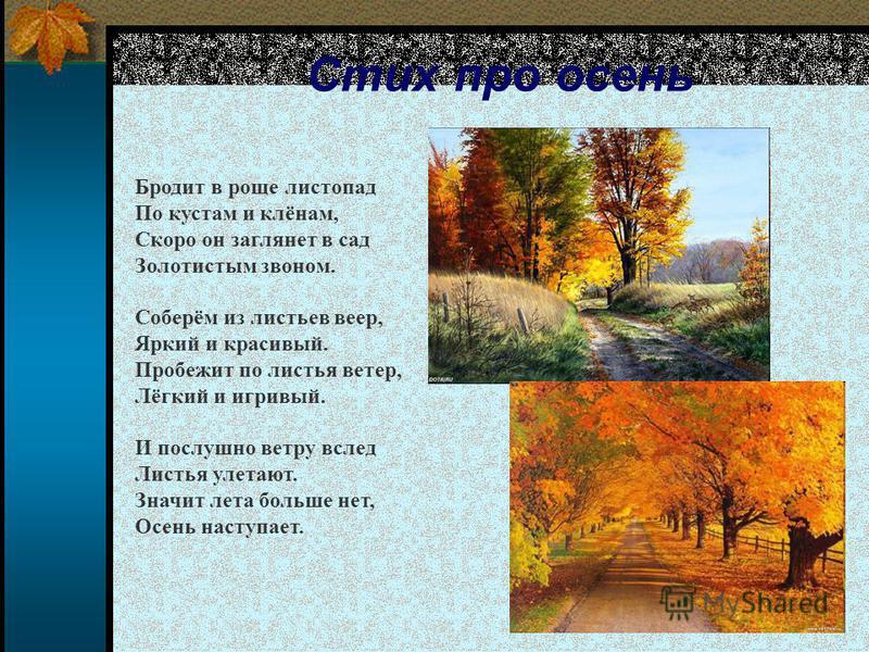 Стих про осень Бродит в роще листопад По кустам и клёнам, Скоро он заглянет в сад Золотистым звоном. Соберём из листьев веер, Яркий и красивый. Пробежит по листья ветер, Лёгкий и игривый. И послушно ветру вслед Листья улетают. Значит лета больше нет,