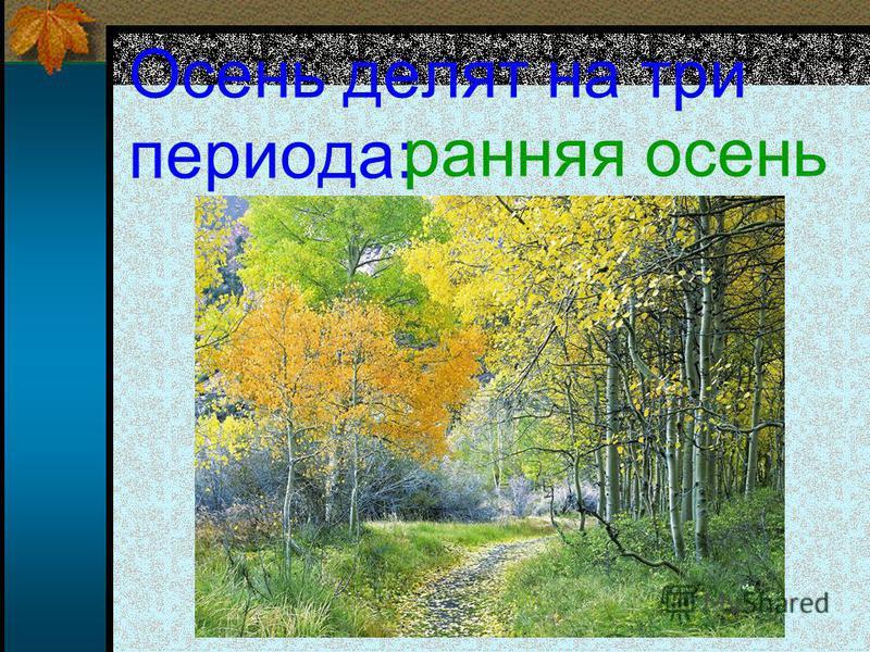 Осень делят на три периода: ранняя осень