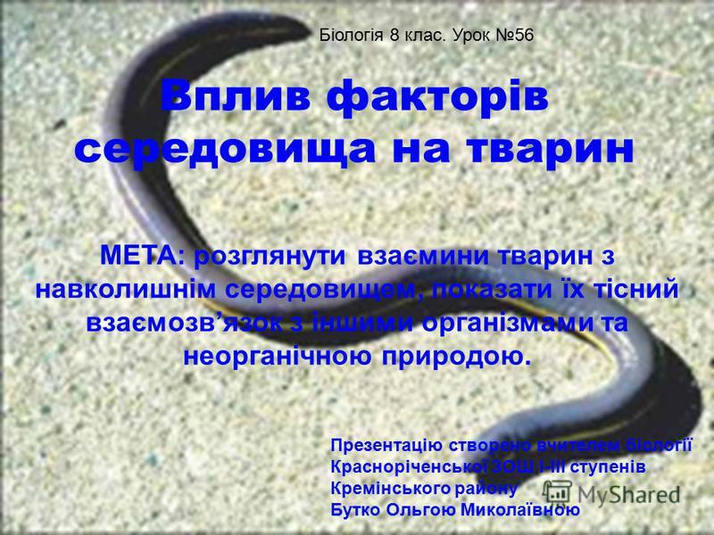 Вплив факторів середовища на тварин МЕТА: розглянути взаємини тварин з навколишнім середовищем, показати їх тісний взаємозвязок з іншими організмами та неорганічною природою. Біологія 8 клас. Урок 56 Презентацію створено вчителем біології Краснорічен