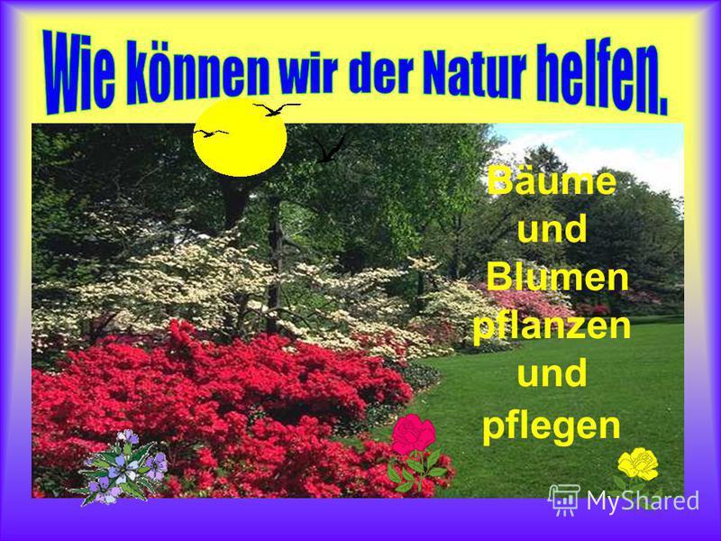 Bäume und Blumen pflanzen und pflegen