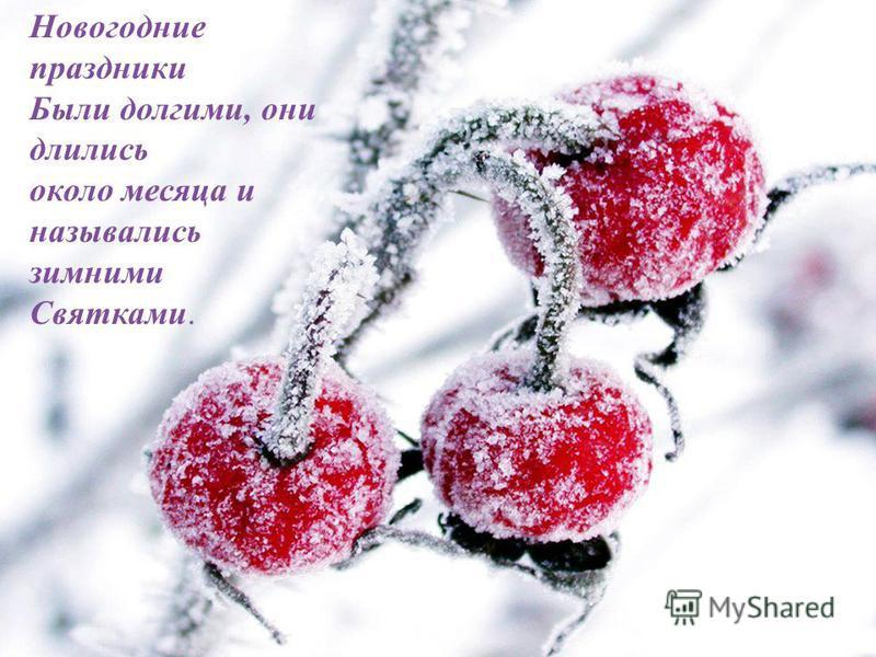 26.07.201515 Дополнительно... Новогодние праздники Были долгими, они длились около месяца и назывались зимними Святками.