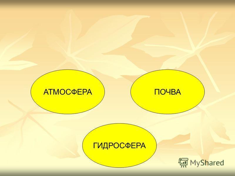 АТМОСФЕРАПОЧВА ГИДРОСФЕРА