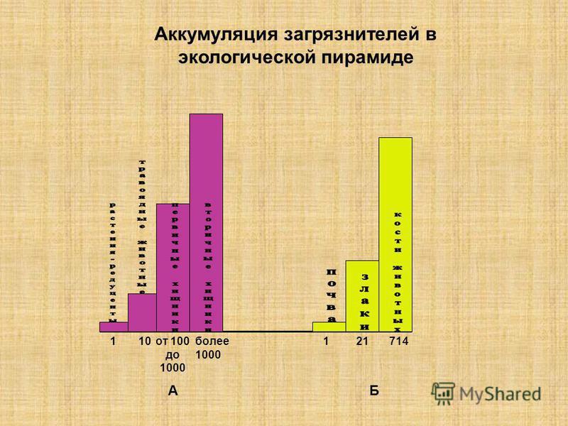 Аккумуляция загрязнителей в экологической пирамиде 110 от 100 до 1000 более 1000 121714 АБ