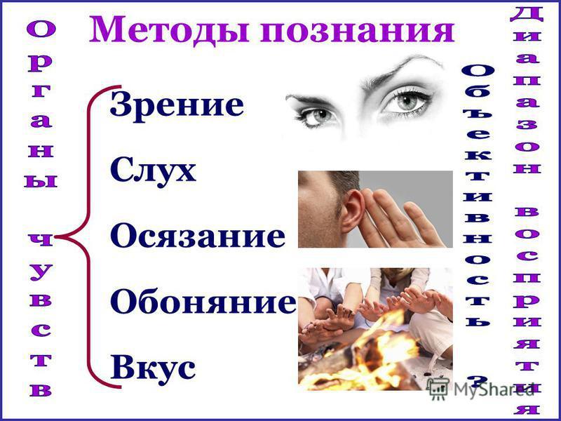 Зрение Слух Осязание Обоняние Вкус Методы познания