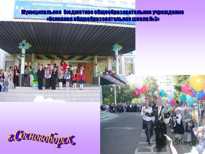Муниципальное бюджетное общеобразовательное учреждение «Основная общеобразовательная школа 3»