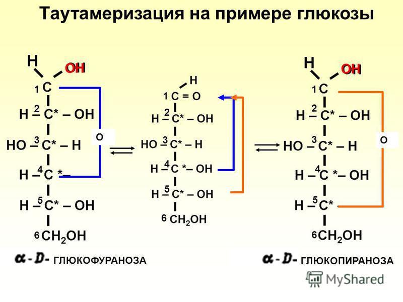 O O OH 1 2 3 4 5 6 1 2 3 4 5 6 1 2 3 4 5 6 ГЛЮКОПИРАНОЗА ГЛЮКОФУРАНОЗА Таутамеризация на примере глюкозы