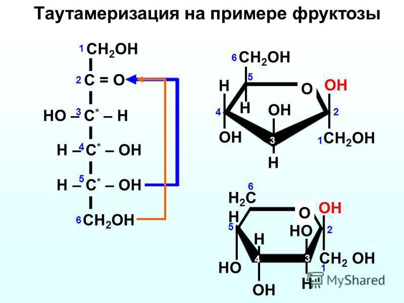 CH 2 OH H H OH O H CH 2 OH C = O HO – C * – H H – C * – OH CH 2 OH H – C * – OH OH CH 2 OH 1 2 3 4 5 6 1 2 3 4 5 6 H 2 C H OH O HO H OH CH 2 OH H 1 2 3 4 5 6 Таутамеризация на примере фруктозы