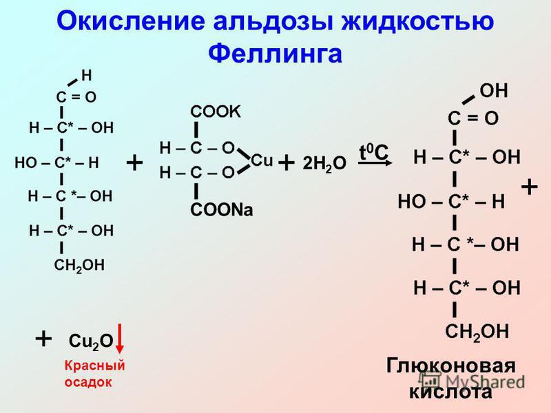 ++ 2H 2 O t0Ct0C Глюконовая кислота + + Cu 2 O COONa Окисление альдозы жидкостью Феллинга Красный осадок