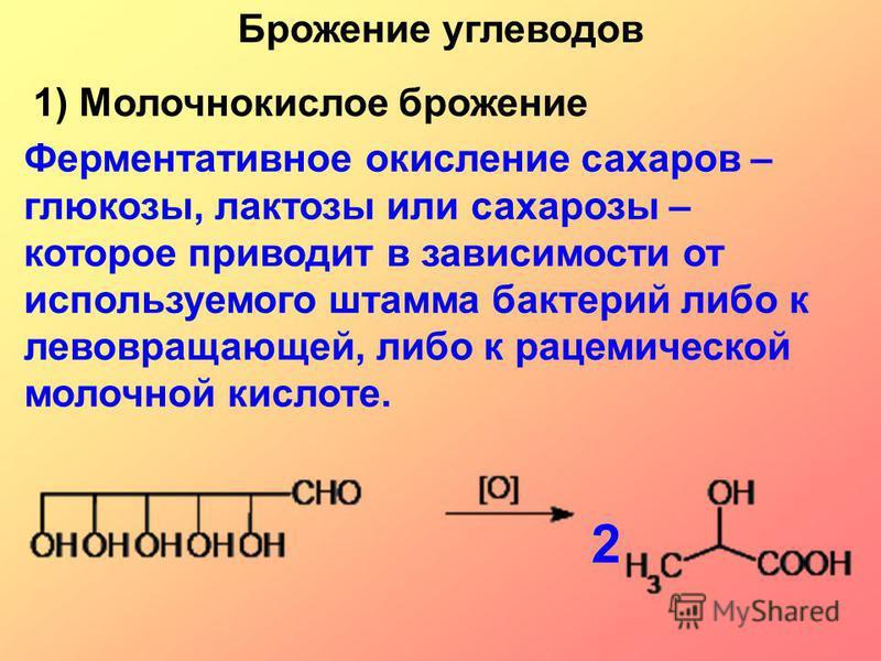 Ферментативное окисление сахаров – глюкозы, лактозы или сахарозы – которое приводит в зависимости от используемого штамма бактерий либо к левовращающей, либо к рацемической молочной кислоте. 22 Брожение углеводов 1) Молочнокислое брожение