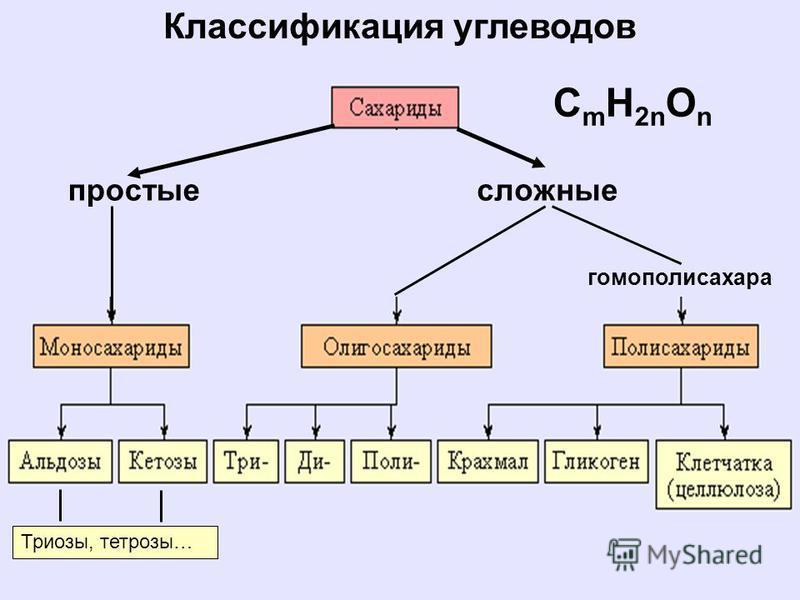Классификация углеводов простые сложные Триозы, тетрозы… гомополисахара C m H 2n O n