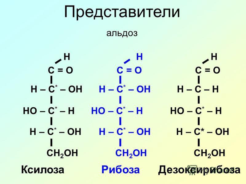 Представители альдоз C = O H – C * – OH HO – C * – H H – C * – OH CH 2 OH H C = O H – C * – OH HO – C * – H H – C * – OH CH 2 OH H C = O H – C – H HO – C * – H H – C* – OH CH 2 OH H Ксилоза РибозаДезоксирибоза