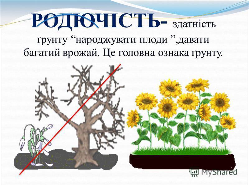 РОДЮЧІСТЬ- здатність ґрунту народжувати плоди,давати багатий врожай. Це головна ознака ґрунту.