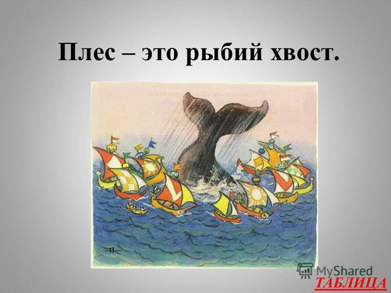 Что бы это значило? 400 «Чудо-юдо Рыба-кит Громким голосом кричит, Рот широкий отворяя, Плесом волны разбивая…» Плес – что это?