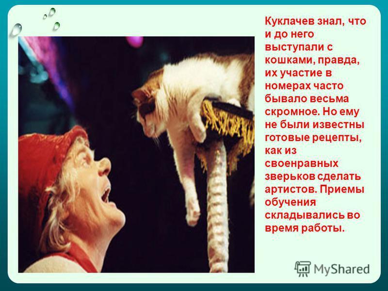 Куклачев знал, что и до него выступали с кошками, правда, их участие в номерах часто бывало весьма скромное. Но ему не были известны готовые рецепты, как из своенравных зверьков сделать артистов. Приемы обучения складывались во время работы.