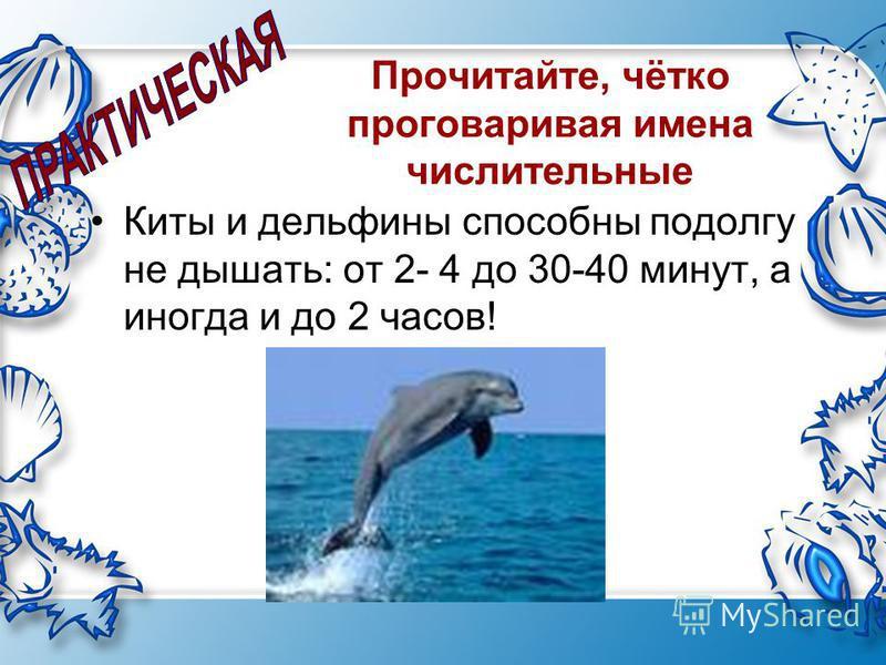 Прочитайте, чётко проговаривая имена числительные Киты и дельфины способны подолгу не дышать: от 2- 4 до 30-40 минут, а иногда и до 2 часов!
