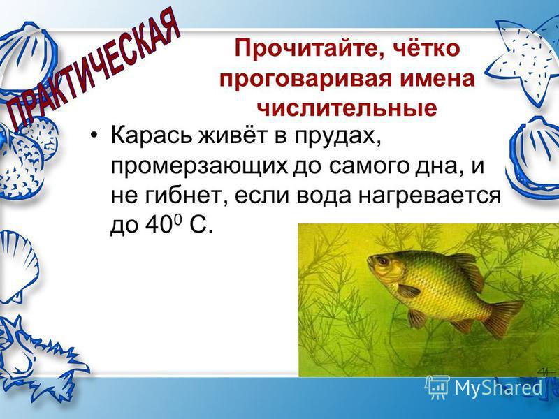 Прочитайте, чётко проговаривая имена числительные Карась живёт в прудах, промерзающих до самого дна, и не гибнет, если вода нагревается до 40 0 С.