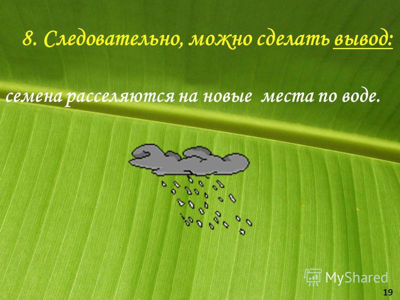 8. Следовательно, можно сделать вывод: семена расселяются на новые места по воде. 19