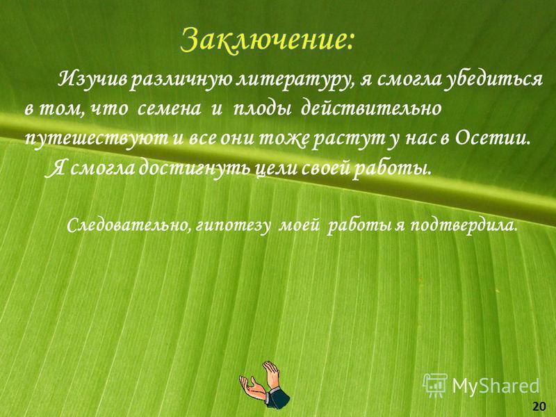 Изучив различную литературу, я смогла убедиться в том, что семена и плоды действительно путешествуют и все они тоже растут у нас в Осетии. Я смогла достигнуть цели своей работы. Следовательно, гипотезу моей работы я подтвердила. 20