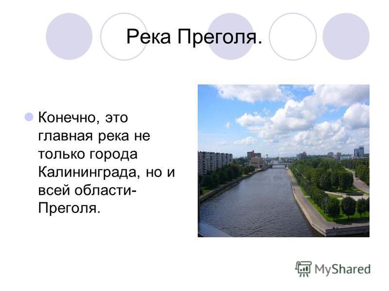 Река Преголя. Конечно, это главная река не только города Калининграда, но и всей области- Преголя.