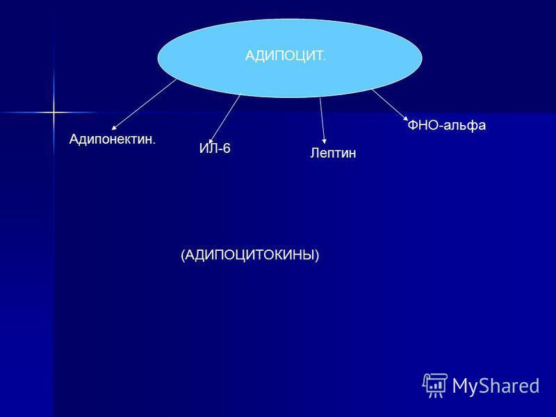 АДИПОЦИТ. ФНО-альфа Лептын ИЛ-6 Адипонектын. (АДИПОЦИТОКИНЫ)