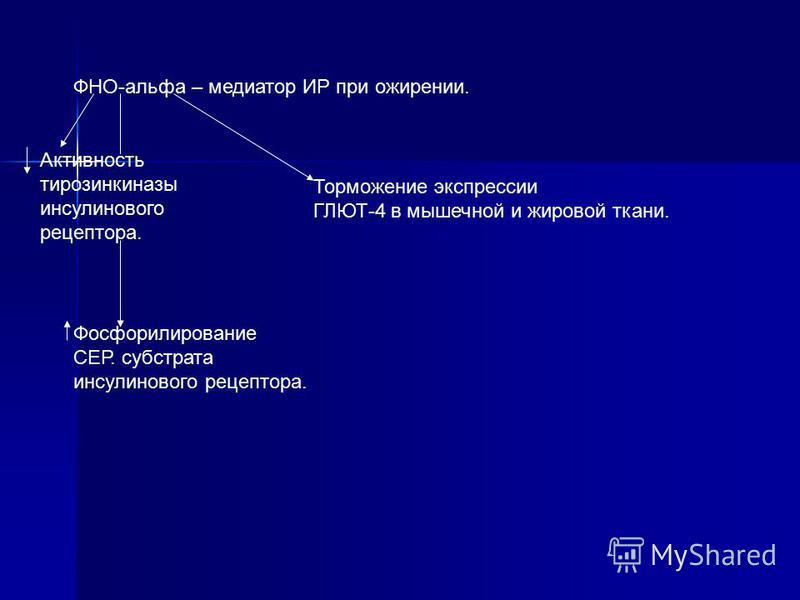 ФНО-альфа – медиатор ИР при ожирении. Актывность тырозинкиназы инсулинового рецептора. Фосфорилирование СЕР. субстрата инсулинового рецептора. Торможение экспрессии ГЛЮТ-4 в мышечной и жировой ткани.