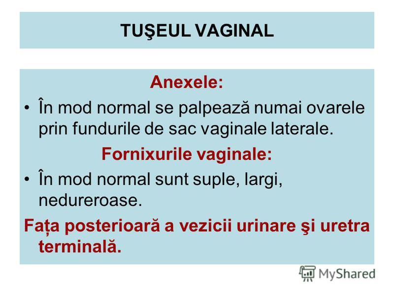 TUŞEUL VAGINAL Anexele: În mod normal se palpează numai ovarele prin fundurile de sac vaginale laterale. Fornixurile vaginale: În mod normal sunt suple, largi, nedureroase. Faţa posterioară a vezicii urinare şi uretra terminală.