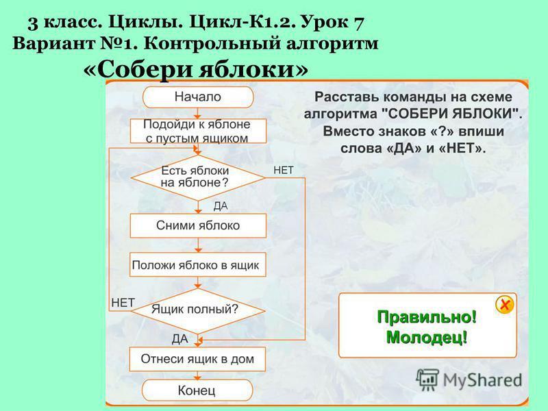 3 класс. Циклы. Цикл 3.2 Алгоритм «Разложи кольца»