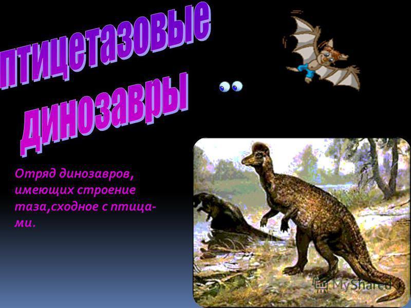 На всей планете царили рептилии. В воде жили морские ящеры и крокодилы, в воздухе парили летающие ящеры, а на суше обитали огромные причудливые рептилии-динозавры, что в переводе значит-ужасные ящеры.