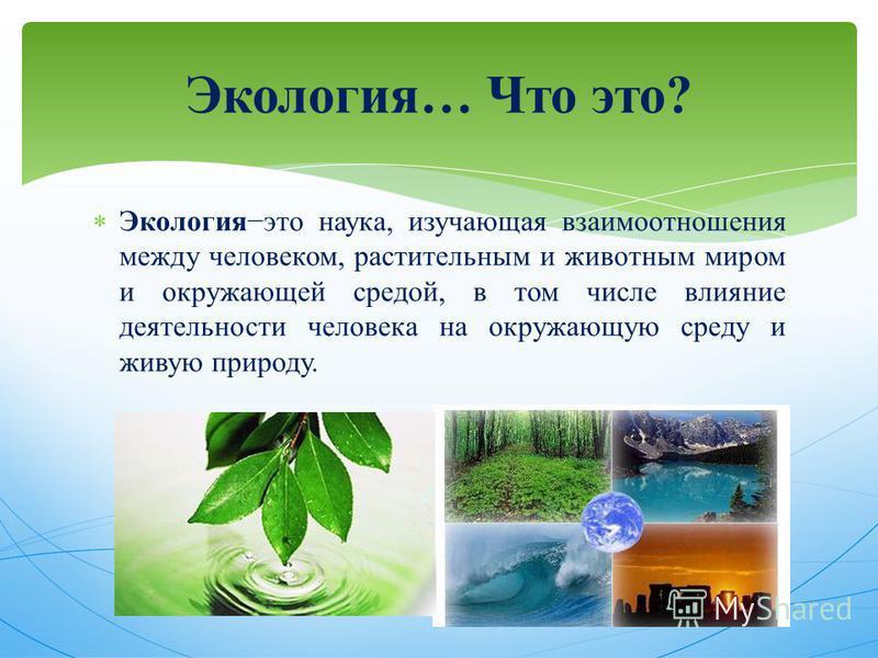 Экология это наука, изучающая взаимоотношения между человеком, растительным и животным миром и окружающей средой, в том числе влияние деятельности человека на окружающую среду и живую природу. Экология… Что это?